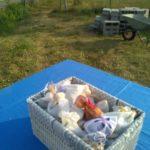 cesta lavanda del garda